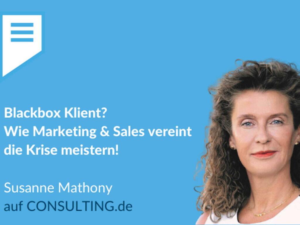 Marketing Sales im Consulting